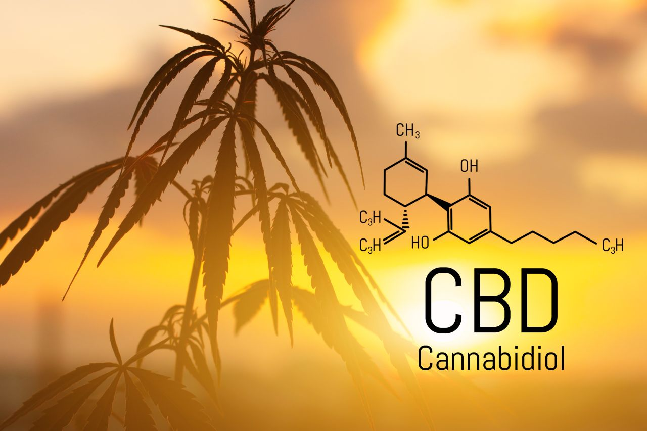 cbd-what-to-know